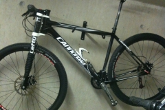 2010 cannondale-flash-29er-1