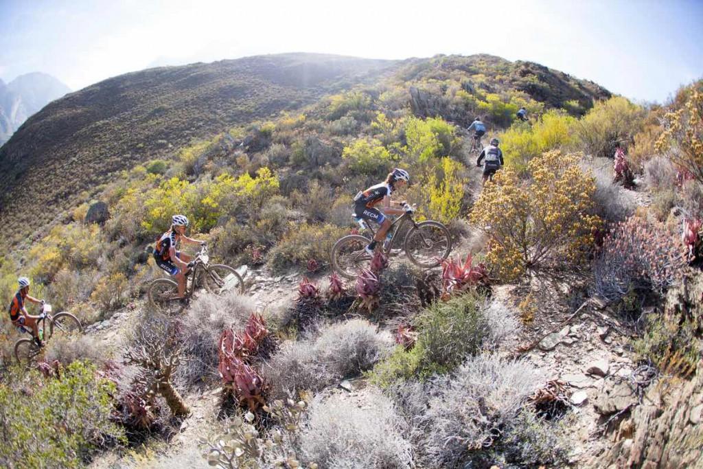 Typisches Cape Epic Gelände